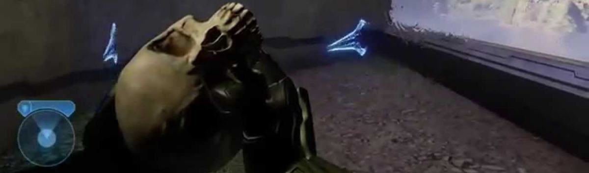 Top 10 Most Fun Halo Skulls