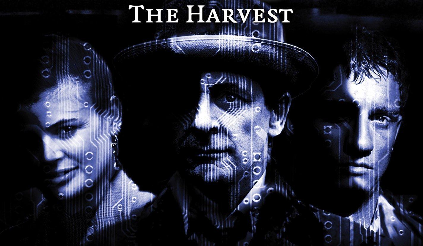 the-harvest.jpg